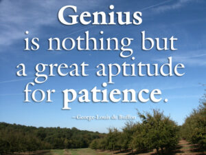 Motivational Quote on Genius: Genius is nothing but a greater aptitude for patience