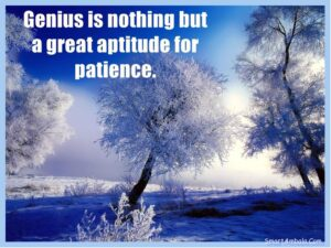 Motivational Quote on Genius: Genius is nothing but a greater aptitude