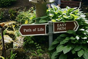 easy_path_or_path_of_life_by_ajb_2k3-d37s1kg