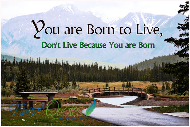 Motivational Quote on Life: Don't live because you are born.