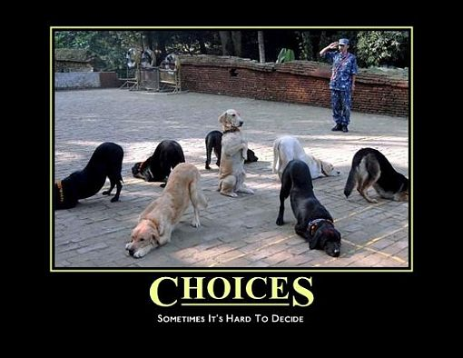 Motivational Quote on Choices: Many a times we are bound to choose
