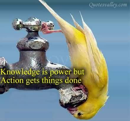 Motivational Quote On Action Knowledge Is Power But Action Gets Amazing Knowledge Is Power Quote