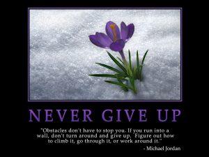Motivational wallpaper-never-give-up_1024x768