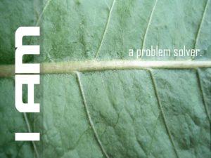 Motivational wallpaper on Problem : I am a Problem Solver !!