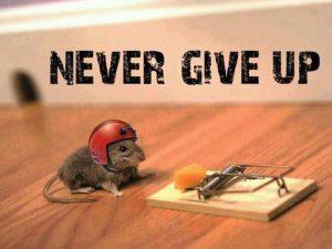Never Give Up Motivational wallpaper