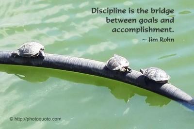 Motivational Wallpaper on Bridge: Discipline is the bridge between goals