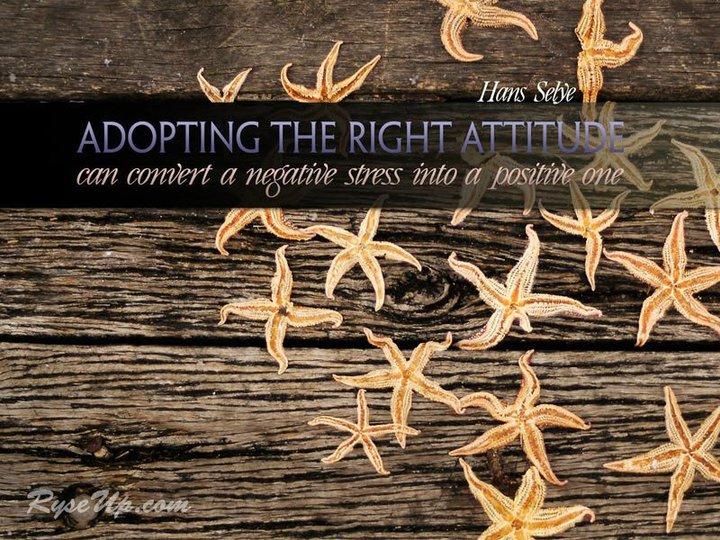Motivational Wallpaper on Attitude: Adopting the right Attitude