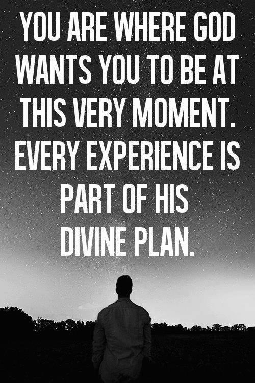 Quote on Gods divine Plan