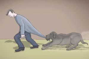 A Black Dog Called Depression