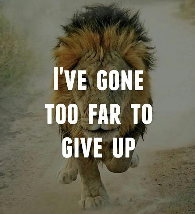 giveup@dontgiveupworld
